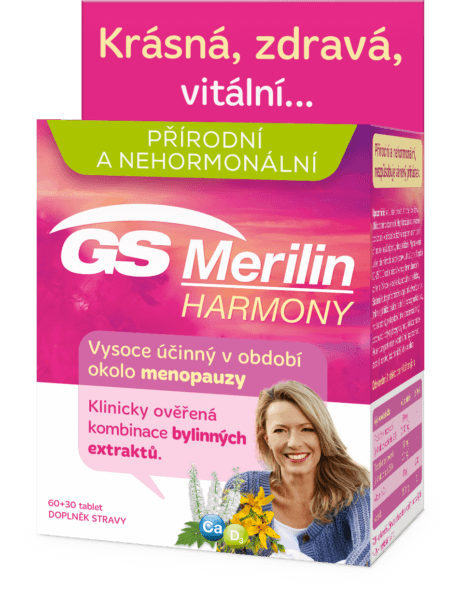 gs-merilin-461x604